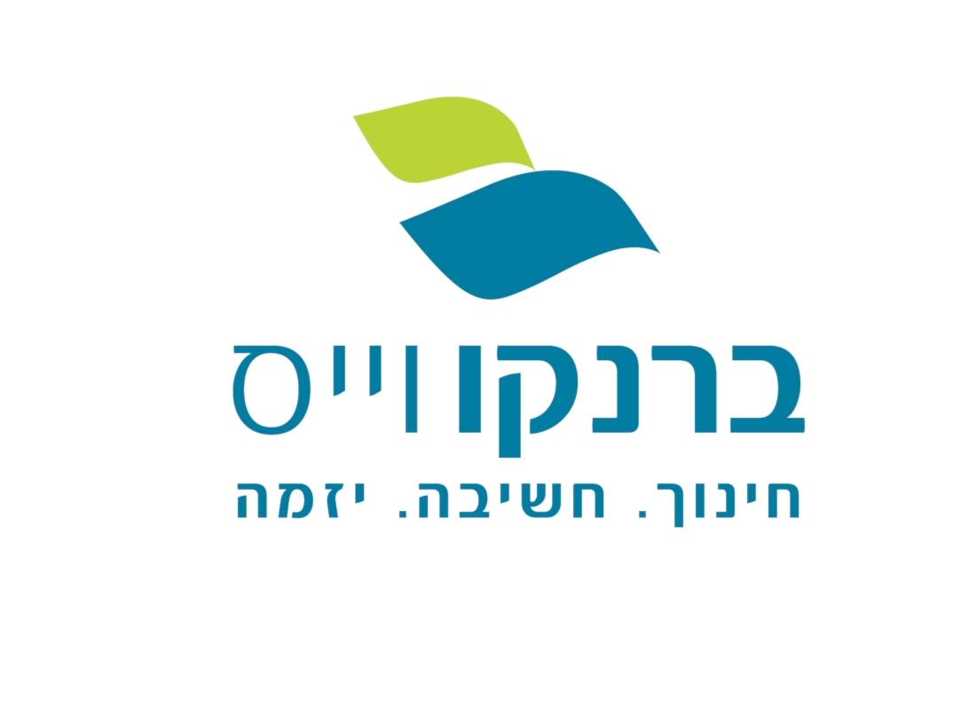 BrankoVais Logo